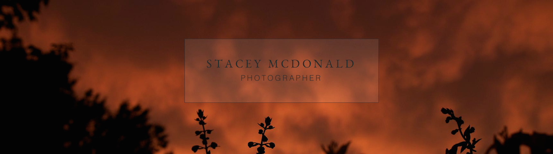 Stacey McDonald Photography