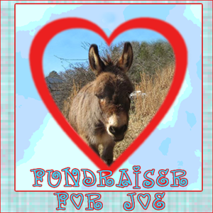 Click on Joe's Picture to donate
