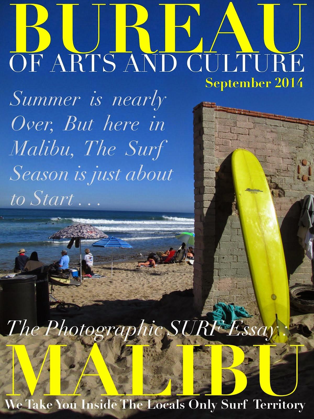 READ BUREAU SURFING SECTION