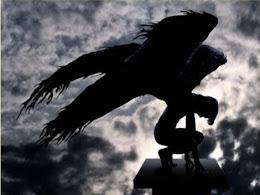 Sus grandes alas