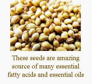 coriander seeds antioxidant properties