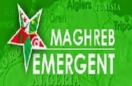 Riadh Sidaoui, politologue : « L'Organisation de l'Etat Islamique n'a aucune structure au Maghreb »