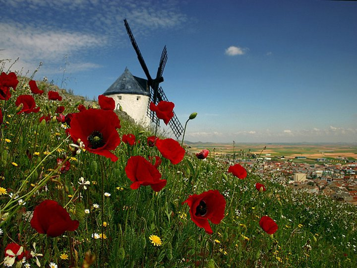 Cosas para compartir paisajes imagenes especiales for Sfondi desktop gratis primavera