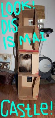 cat-castle-01