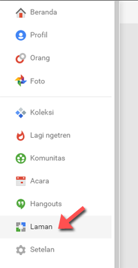 Pages Google Plus