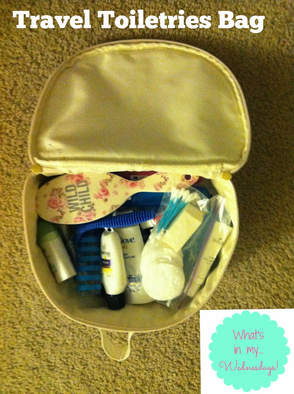 Gina S Agenda What S In My Travel Toiletries Bag