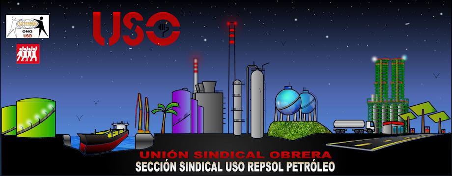 USO REPSOL PETRÓLEO SECCIÓN SINDICAL