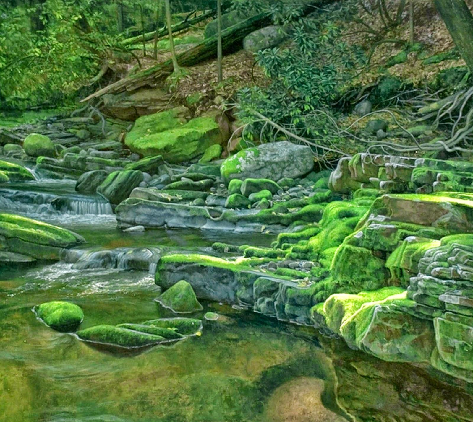 pintura-paisaje-natural-oleo