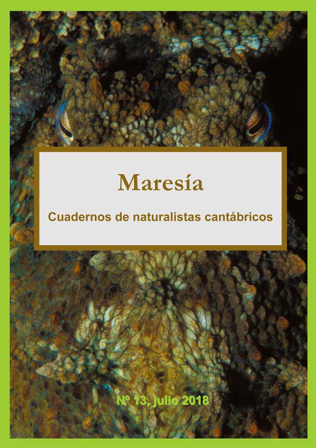 Maresía 13
