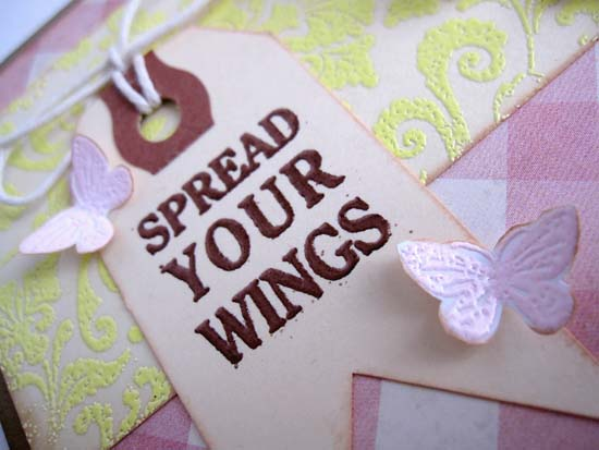 Spread+your+wings+close+43100.jpg