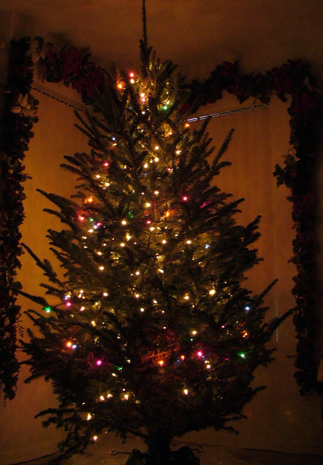 Best 28 Vertical Christmas Tree Lights Outdoor