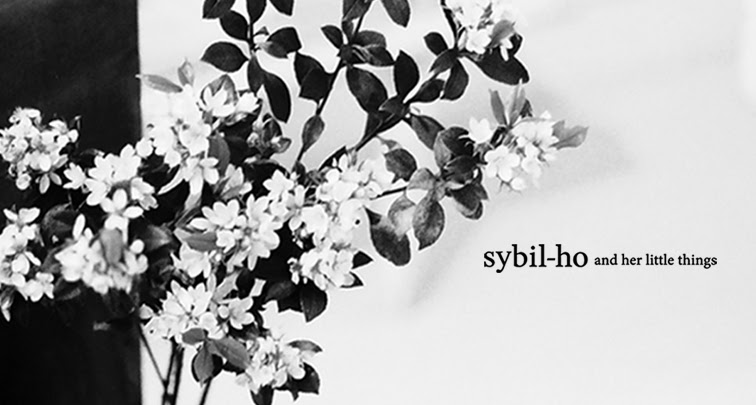 sybil-ho and her little things
