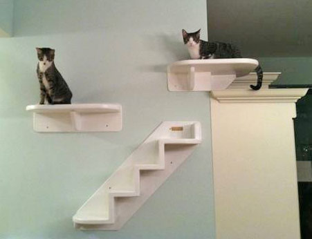 Little Lotus Cat Tower Uk