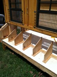 Building custom Chicken Coops
