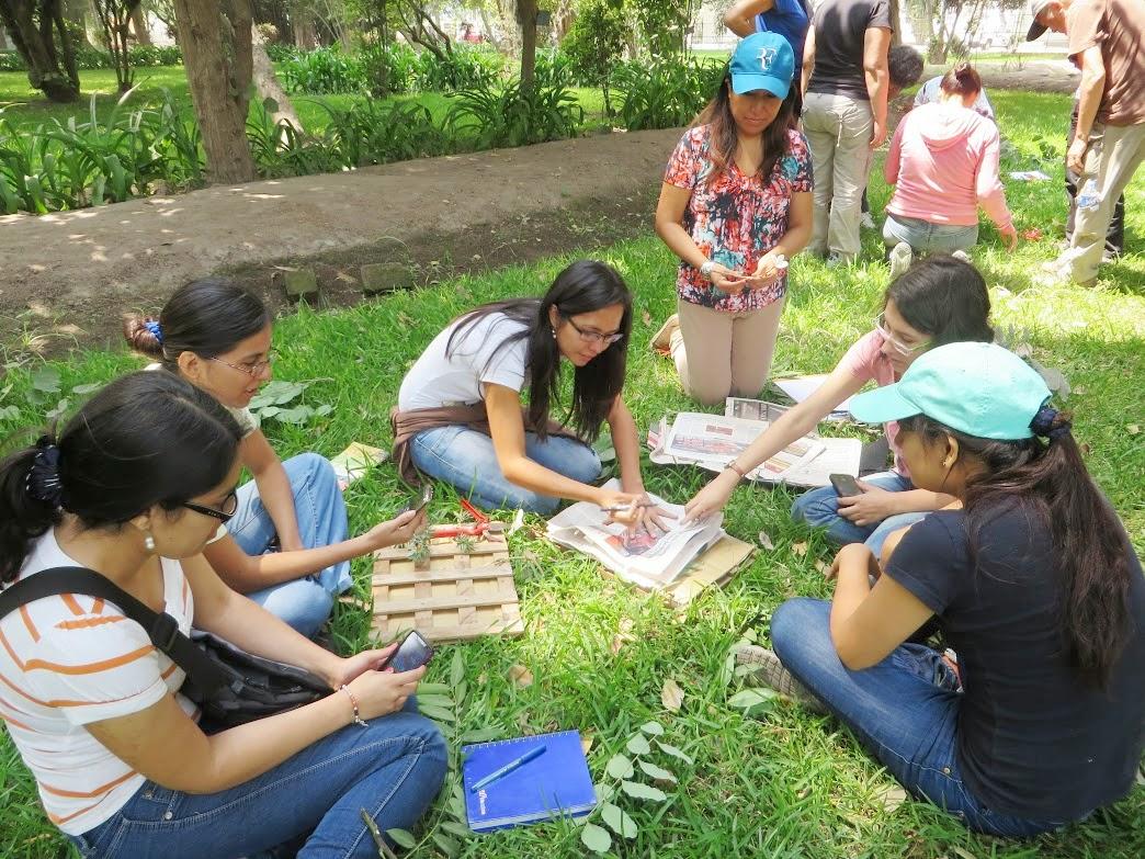 Bit cora arquitectura peruana diploma de especializaci n for Manejo de viveros forestales