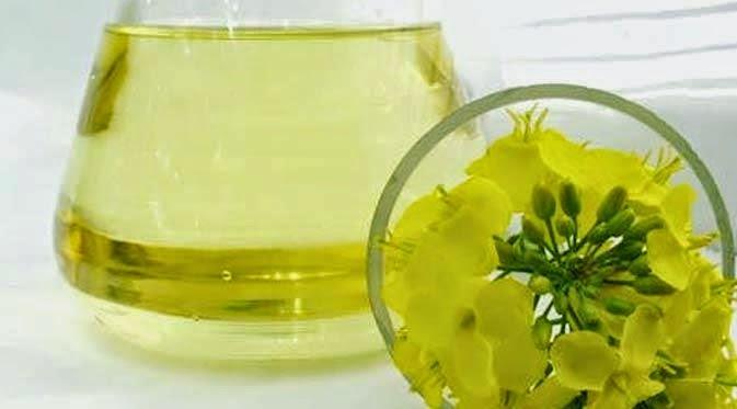 http://tipspetani.blogspot.com/2014/12/manfaat-minyak-canola-bagi-kesehatan.html