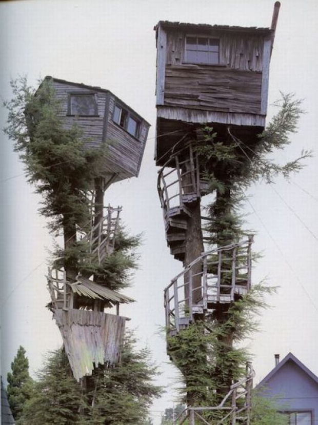 tree-homes05