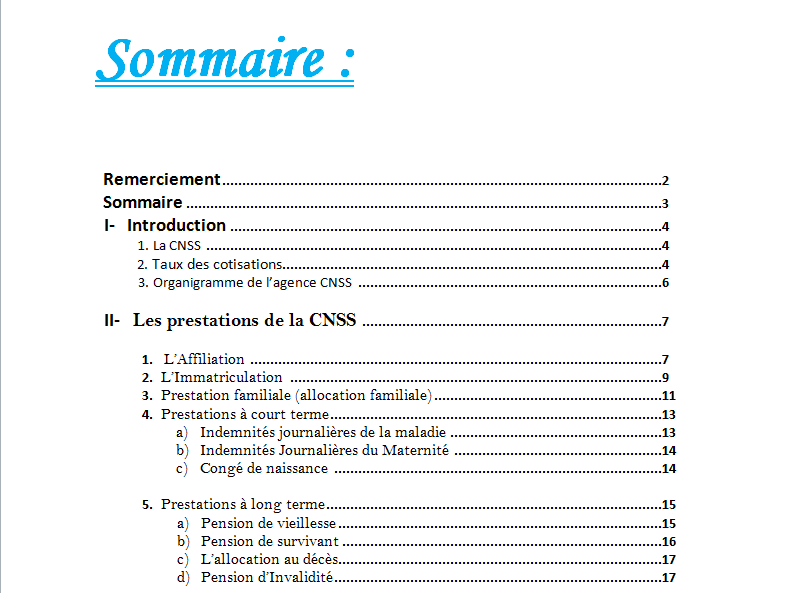 rapport de stage cnss png