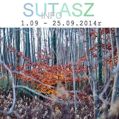 http://www.sutasz.info/2014/09/szyje-z-sutaszinfo-nadchodzi-jesien.html