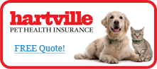 Pet Insurance