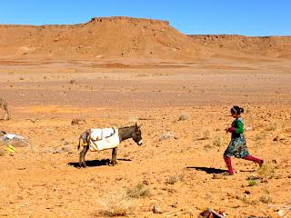 viajar en familia, viajes a marruecos, viajes organizados, marrakech, fez
