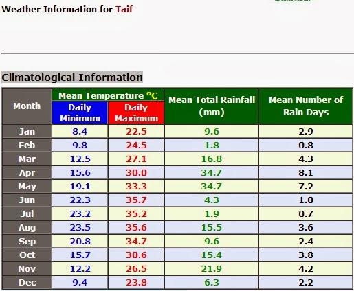 Taif info cuaca
