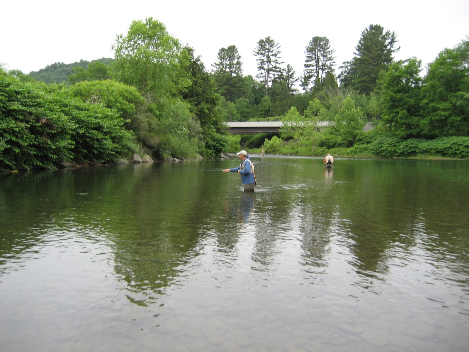 Going to the water new york state parks touring and for Clear creek fishing