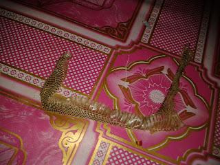 kulit ular senduk