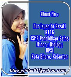 empunya blog