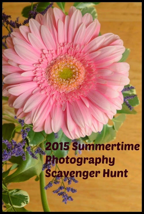 2015 Summertime Photography Scavenger Hunt