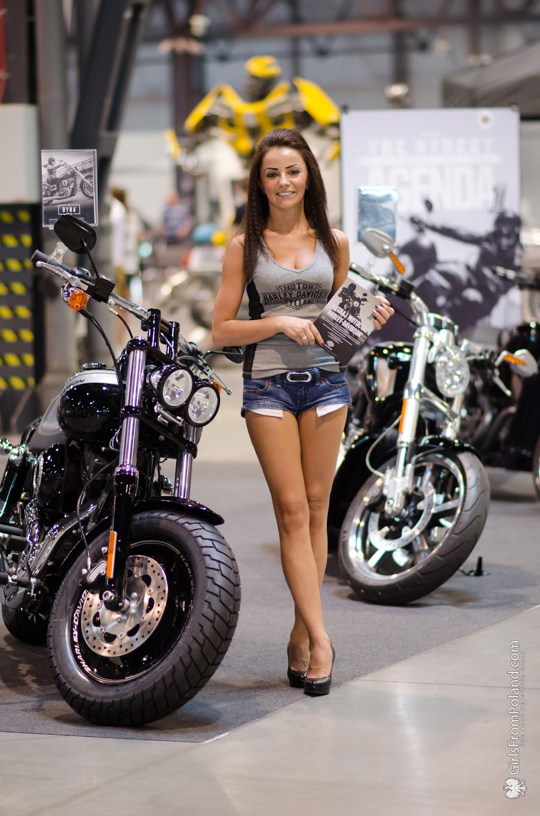 AUTO MOTO SHOW Katowice 2015  Zdjęcie 51