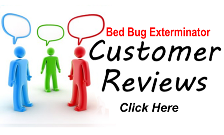 Toronto Bed Bug Exterminator Reviews