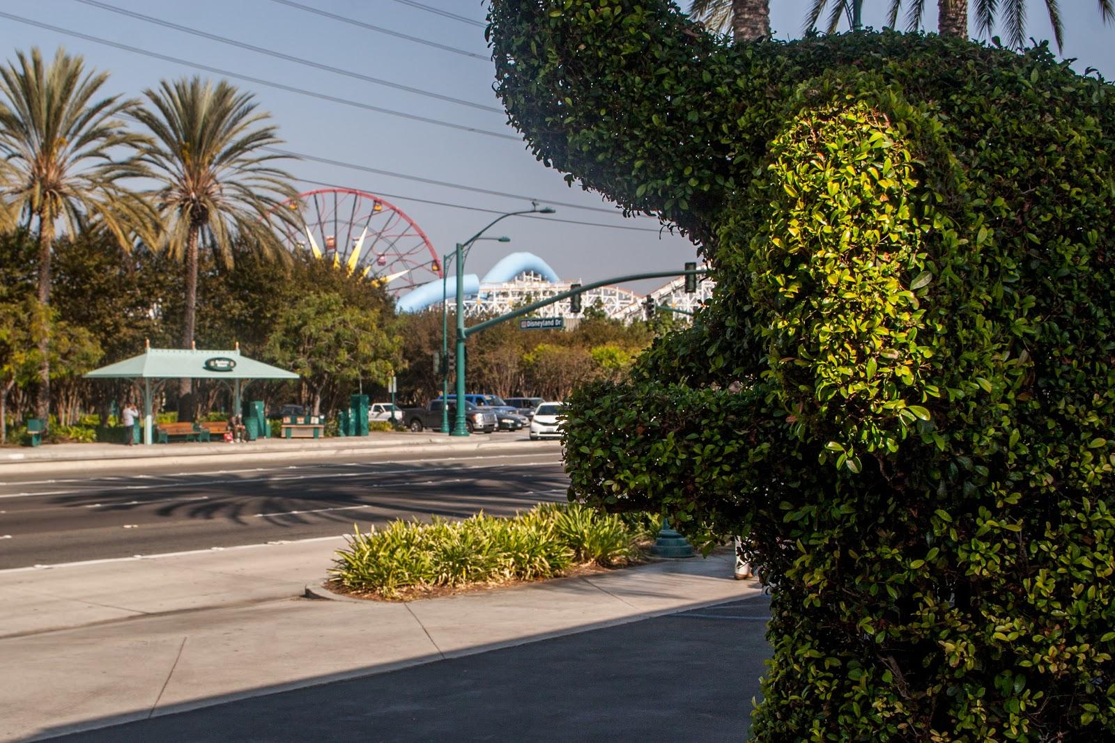 BEST WESTERN PLUS Stovall's Inn - Disneyland Hotel