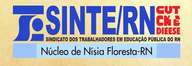 Blog Núcleo Nísia Floresta- RN.