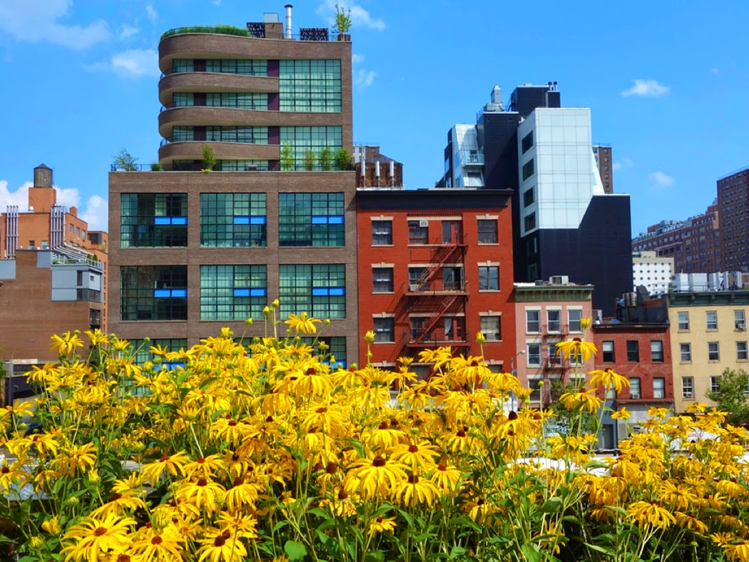 View from along the High Line, NYC