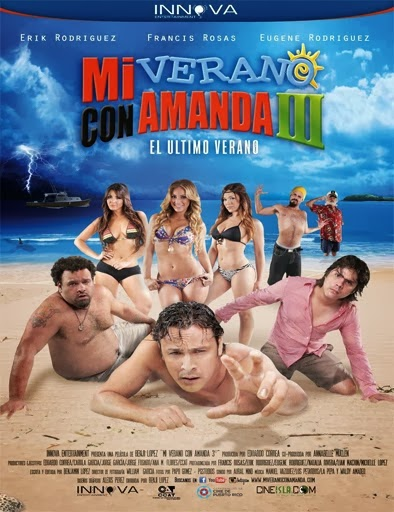 Ver Mi verano con Amanda 3   (2013)