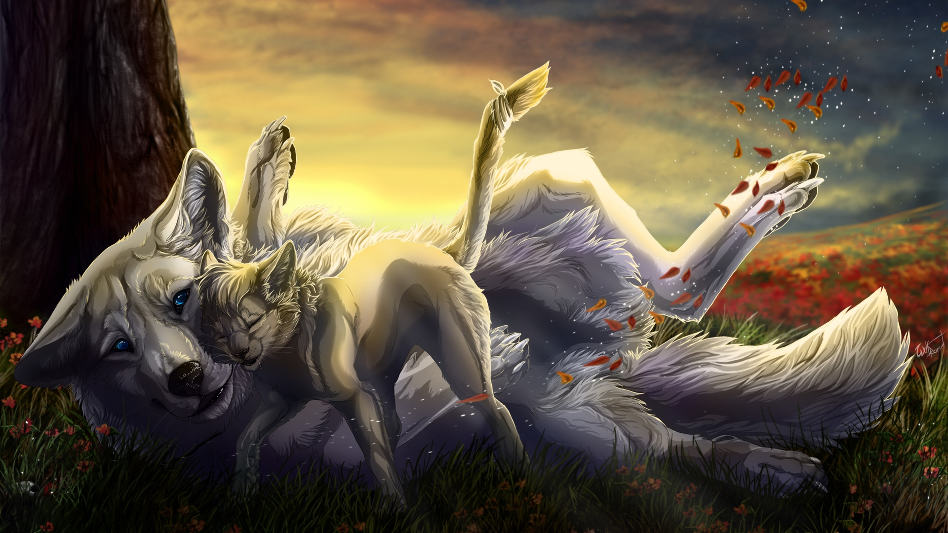 wolf family high definition wallpapers hd wallpapers