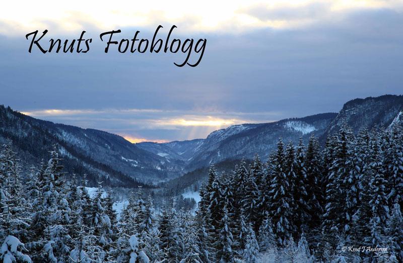 Knuts fotoblogg