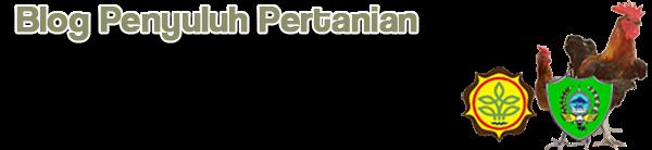 Blog Penyuluh Peternakan