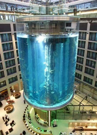 Underwater hotels for Fish hotel tank