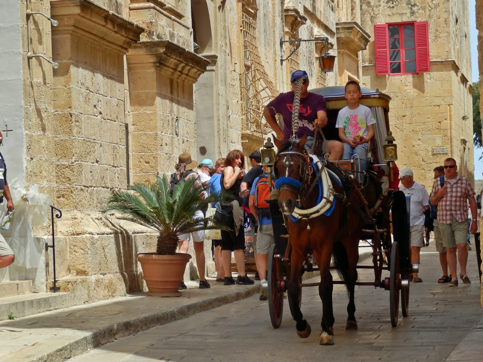 Horse and cart in Mdina Malta