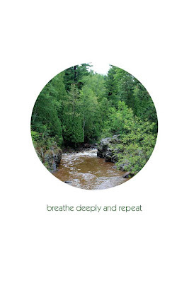 woodland stream breathe deeply and repeat