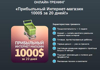 """Онлайн тренинге """"Прибыльный Интернет-магазин 1000$ за 20 дней!"""" 2013 год. Ведущий Николай Спиряев."""