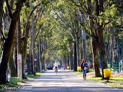 Avenida Rio Grande na Praia do Cassino