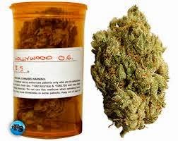 legalização da cannabis