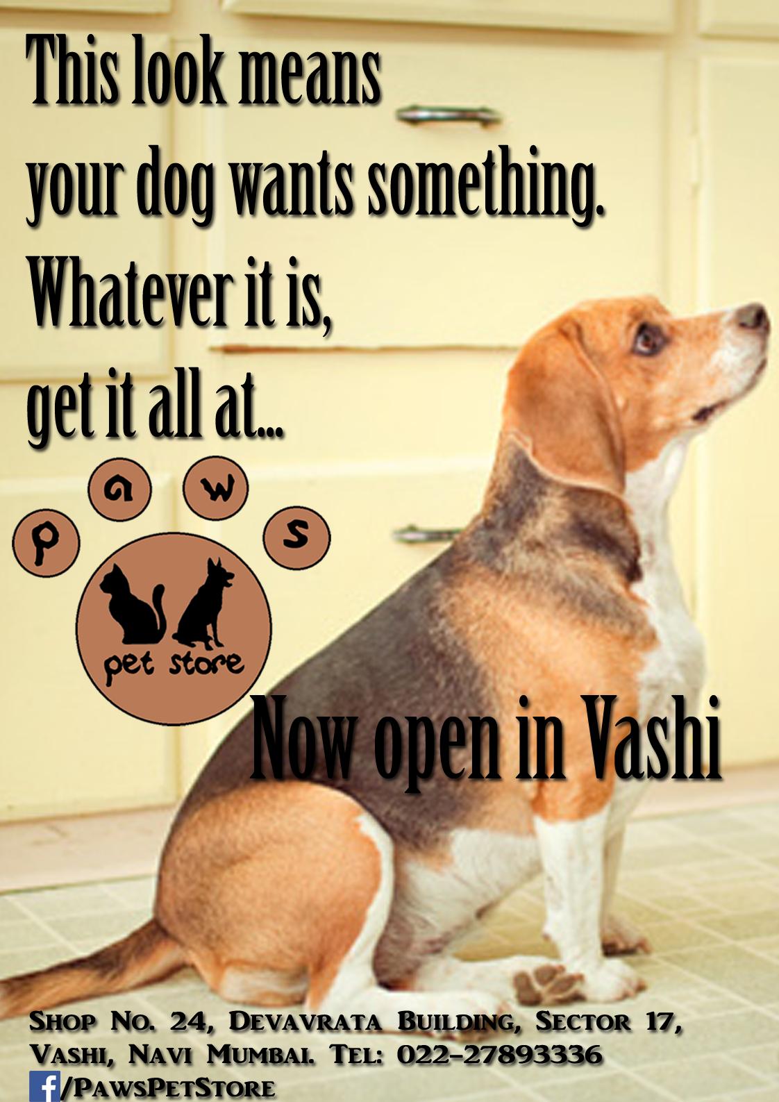 paws pet store magazine ad