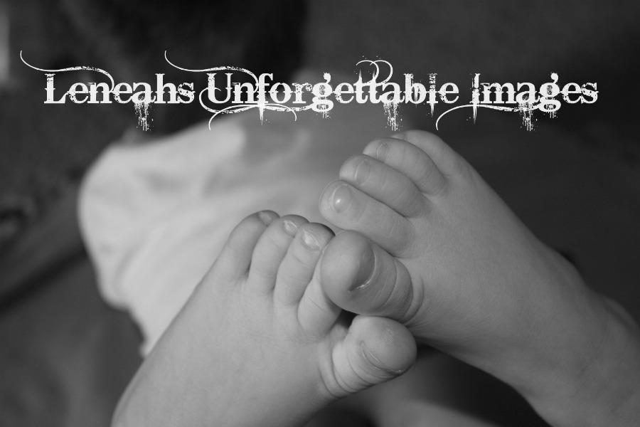 Leneahs Unforgettable Images
