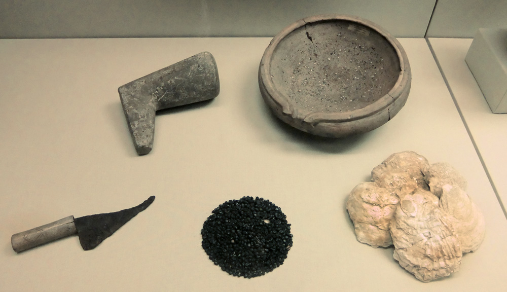 The fall of rome enviormental and public health problems for Kitchen utensils in spanish
