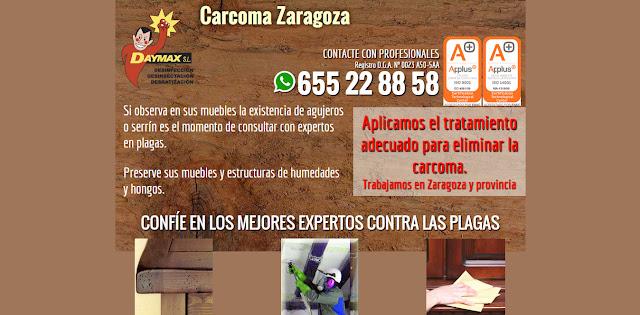 landing page carcoma Zaragoza