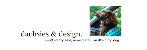 dachsies &amp; design